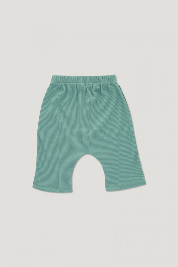 ARCHIE ribbed shorts mineral